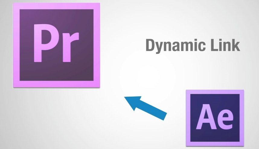 dynamic link